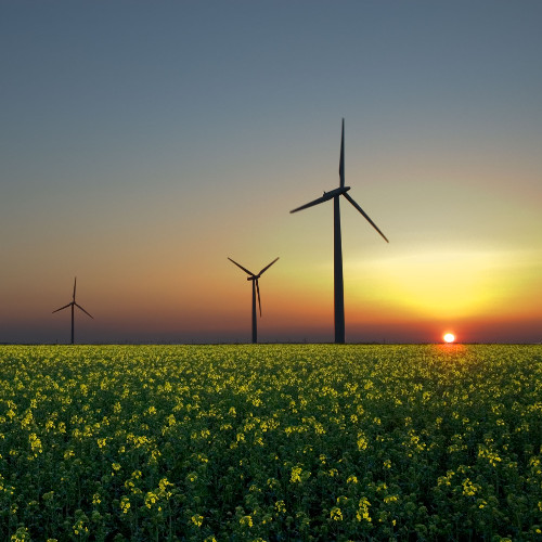 World Call In – Renewable Energy Would Save our Planet